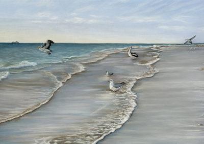 Tennyson Beach